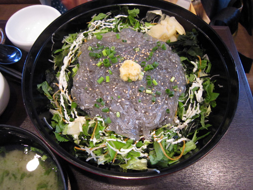 2011.05.21 江の島名物生しらす丼